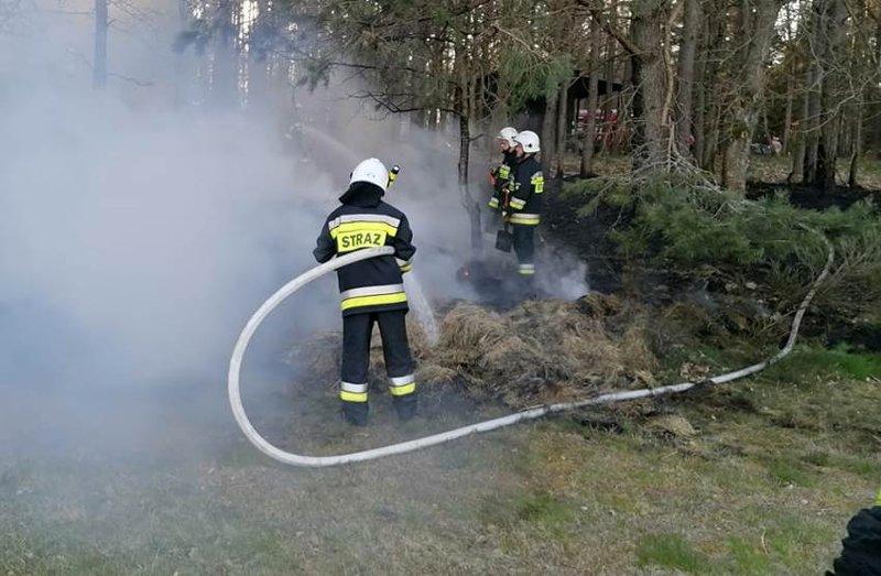 Pożar lasu w Nożynie