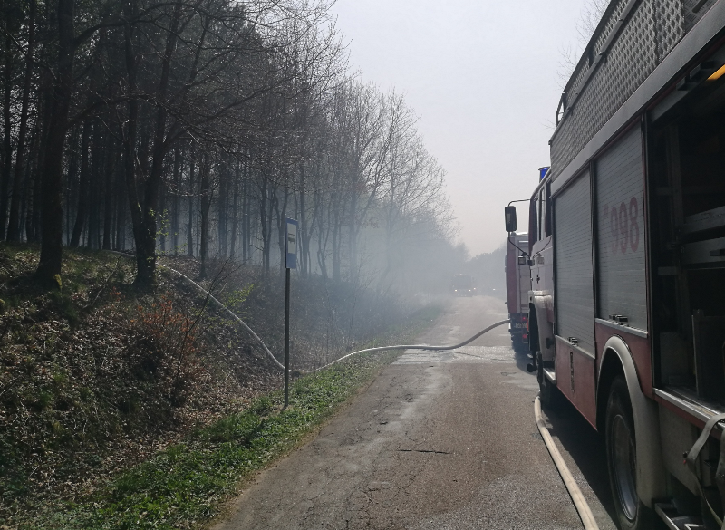 Pożar lasu w Pomysku Małym oraz Żukówku
